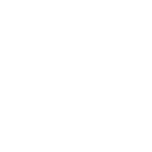 Icon für Erfahrung